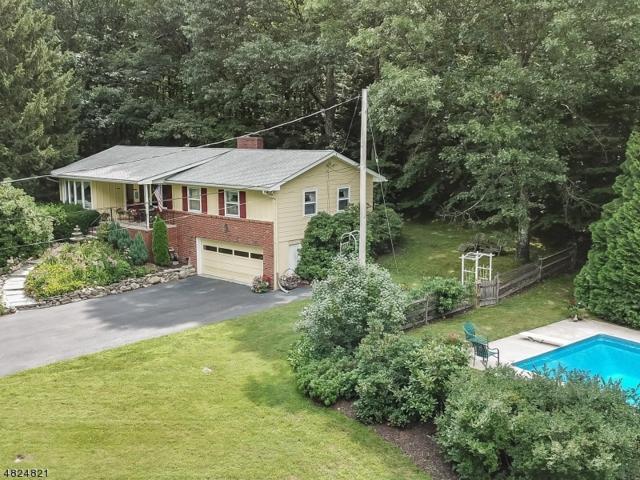 256 Lakeview Dr, Hampton Twp., NJ 07860 (MLS #3492459) :: William Raveis Baer & McIntosh
