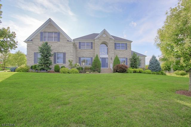 5 Mc Calsey Dr, Hillsborough Twp., NJ 08844 (MLS #3492653) :: SR Real Estate Group