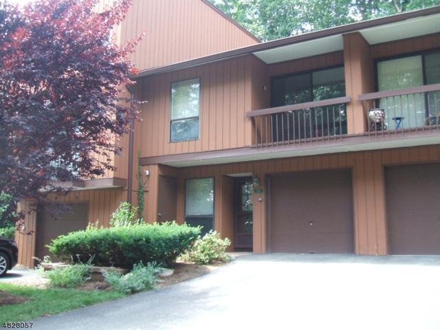 213 East View, Wharton Boro, NJ 07885 (MLS #3492928) :: The Sue Adler Team