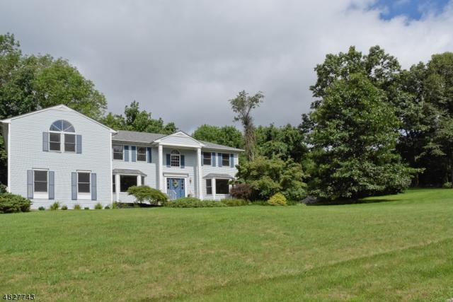 2 Red Oak Ln, Rockaway Twp., NJ 07866 (MLS #3492968) :: William Raveis Baer & McIntosh