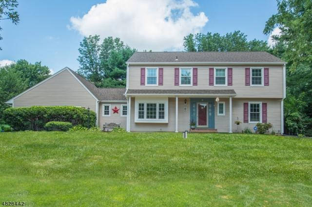 6 Sparrow Rd, Randolph Twp., NJ 07869 (MLS #3493541) :: The Douglas Tucker Real Estate Team LLC
