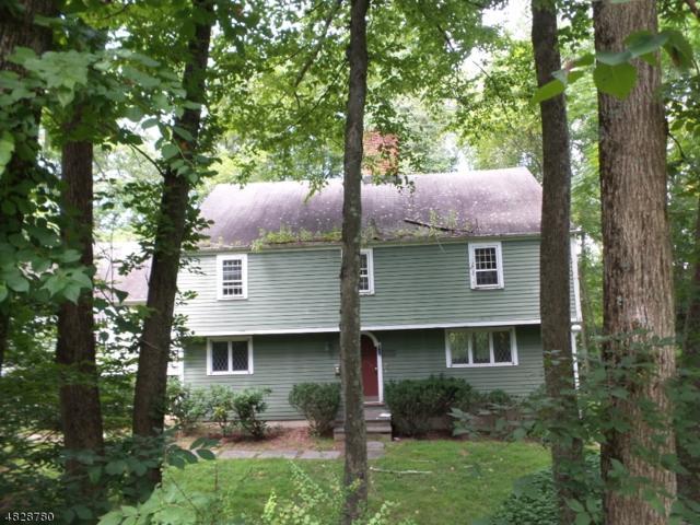 9 House Wren Rd, Allamuchy Twp., NJ 07840 (MLS #3493576) :: The Sue Adler Team