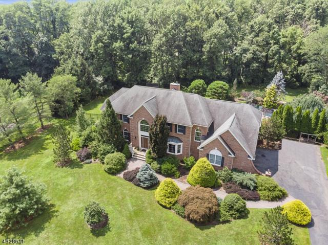 5 Meadow Brook Rd, Chester Twp., NJ 07930 (MLS #3493758) :: RE/MAX First Choice Realtors