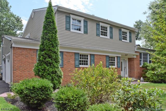185 Intervale Rd, Parsippany-Troy Hills Twp., NJ 07054 (MLS #3493834) :: William Raveis Baer & McIntosh