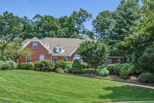 11 E Cove Ln, Morris Twp., NJ 07960 (MLS #3493965) :: SR Real Estate Group