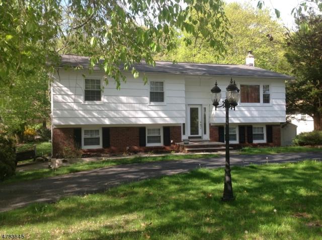 553 Rogers Dr, Roxbury Twp., NJ 07850 (MLS #3494150) :: William Raveis Baer & McIntosh