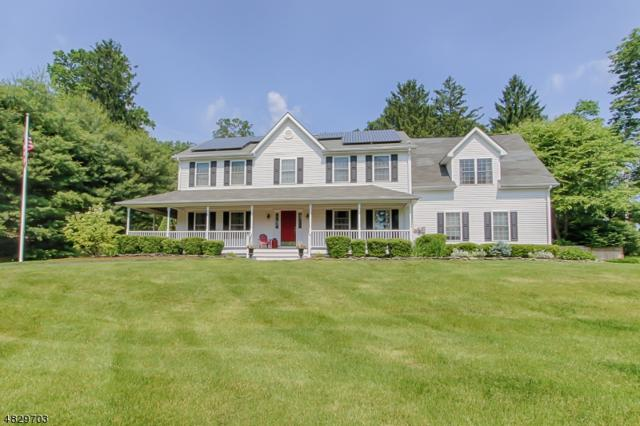 49 South Rd, Randolph Twp., NJ 07945 (MLS #3494428) :: The Douglas Tucker Real Estate Team LLC