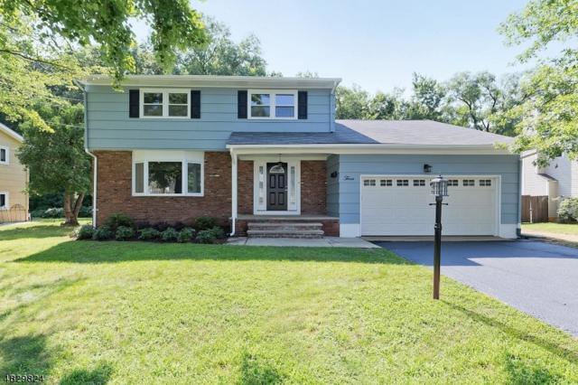 3 Grant St, Cranford Twp., NJ 07016 (MLS #3494531) :: The Dekanski Home Selling Team