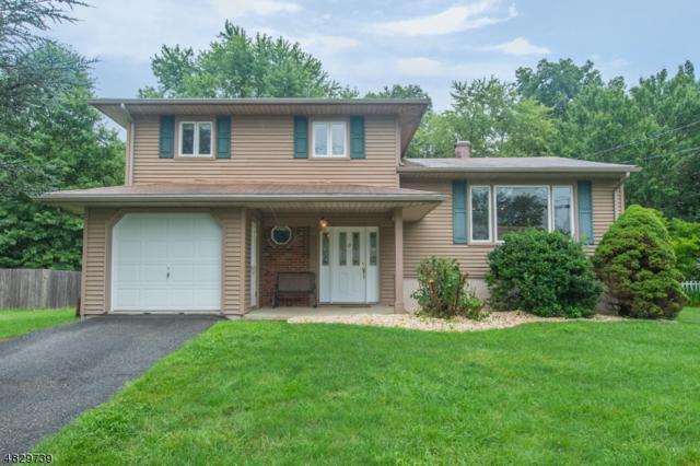 58 Clover Hill Dr, Mount Olive Twp., NJ 07836 (MLS #3494646) :: Jason Freeby Group at Keller Williams Real Estate