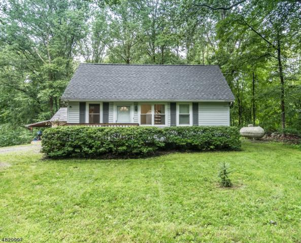 30 Fire Tower Rd, Mount Olive Twp., NJ 07828 (MLS #3494695) :: Jason Freeby Group at Keller Williams Real Estate