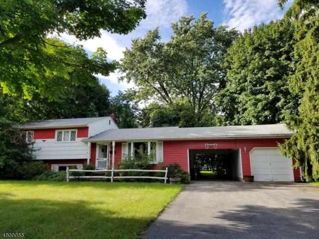 29 Schuyler Ave, Pequannock Twp., NJ 07440 (MLS #3494741) :: Jason Freeby Group at Keller Williams Real Estate