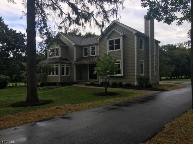 274 Sunset Rd, Montgomery Twp., NJ 08558 (MLS #3494745) :: Jason Freeby Group at Keller Williams Real Estate