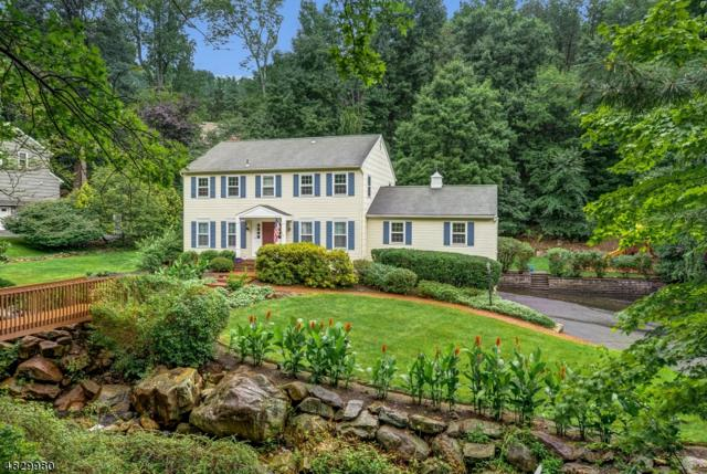 19 Colonel Evans Drive, Morris Twp., NJ 07960 (MLS #3494803) :: SR Real Estate Group