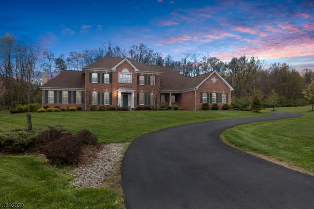 18 High Ridge Ln, Frankford Twp., NJ 07822 (MLS #3494821) :: William Raveis Baer & McIntosh