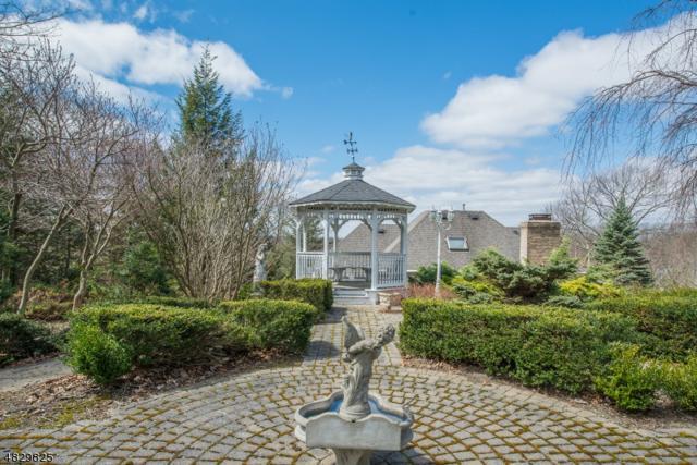 18 N Ridge Rd, Denville Twp., NJ 07834 (MLS #3495114) :: SR Real Estate Group