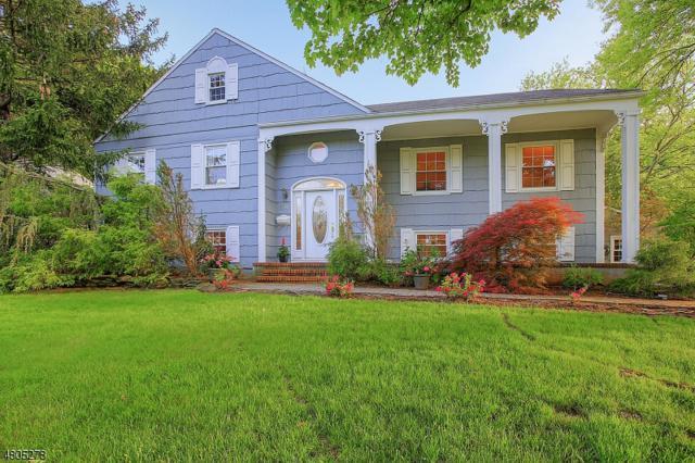 310 Orenda Cir, Westfield Town, NJ 07090 (MLS #3495144) :: SR Real Estate Group