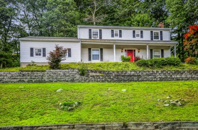 608 Sandra Dr, Mount Arlington Boro, NJ 07850 (MLS #3495492) :: RE/MAX First Choice Realtors