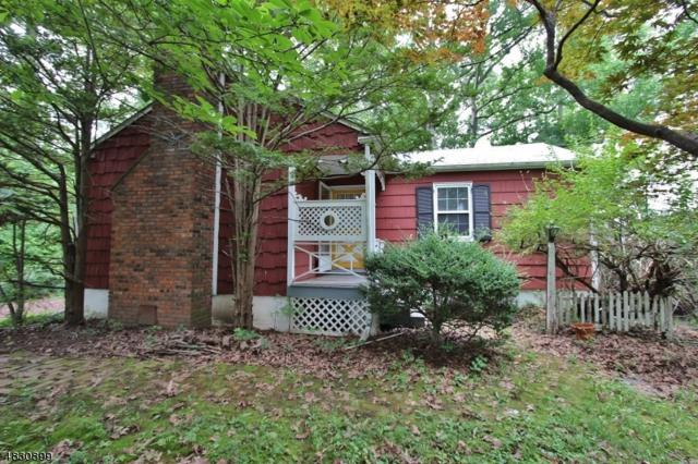 258 Grandview Ave, Piscataway Twp., NJ 08854 (MLS #3495551) :: SR Real Estate Group
