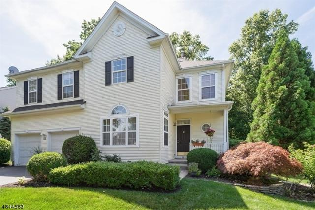 109 York Dr, Montgomery Twp., NJ 08540 (MLS #3495735) :: SR Real Estate Group