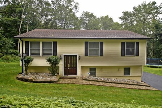 31 Dogwood Dr, Green Twp., NJ 07821 (MLS #3495839) :: William Raveis Baer & McIntosh