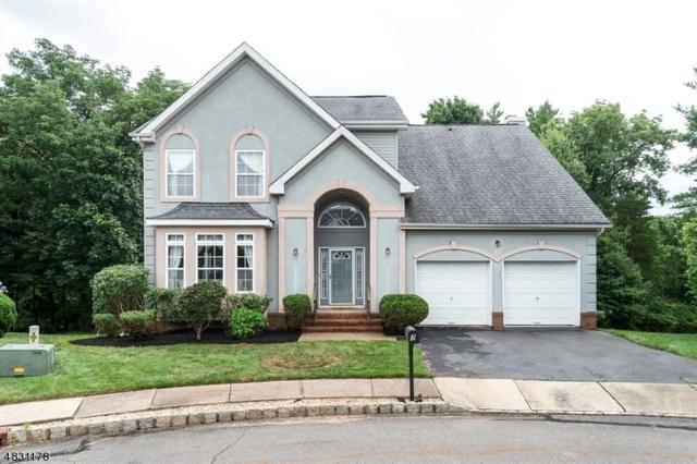 7 Hatfield Ct, Montgomery Twp., NJ 08502 (MLS #3496054) :: The Sue Adler Team