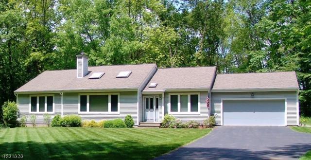 576 Clearview Dr, Hampton Twp., NJ 07860 (MLS #3496419) :: William Raveis Baer & McIntosh