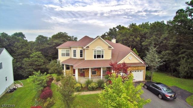 589 Skyline Dr, Jefferson Twp., NJ 07849 (MLS #3496852) :: William Raveis Baer & McIntosh