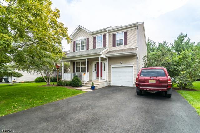 10 Rolling Rapids Ct, Hackettstown Town, NJ 07840 (MLS #3497195) :: SR Real Estate Group