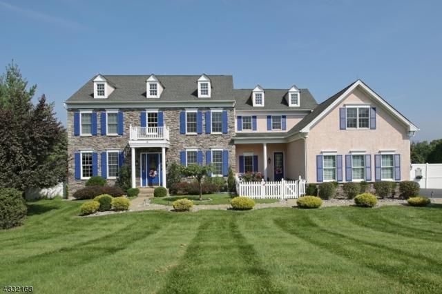 4 Stirling Pl, Union Twp., NJ 08867 (MLS #3498028) :: SR Real Estate Group
