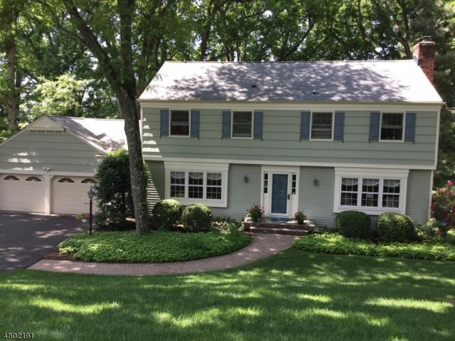 110 Huron Dr, Chatham Twp., NJ 07928 (MLS #3498196) :: SR Real Estate Group