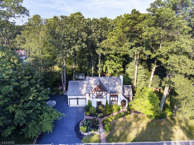 21 N Glen Rd, Mountain Lakes Boro, NJ 07046 (MLS #3498238) :: SR Real Estate Group