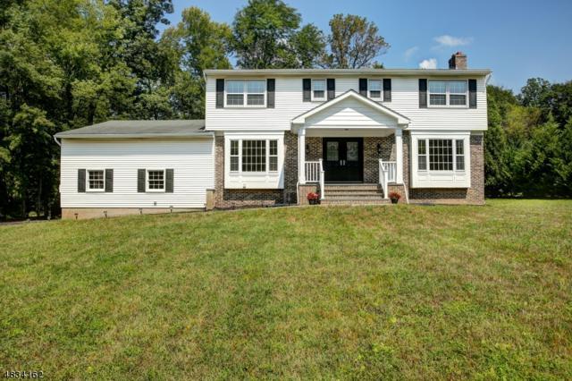 16 Cheryl Rd, Montville Twp., NJ 07058 (MLS #3498449) :: William Raveis Baer & McIntosh