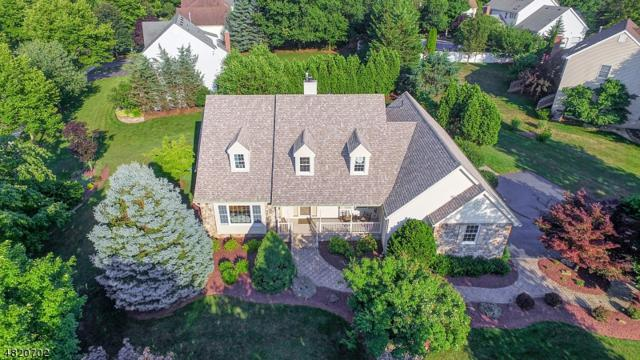 2 Baird Dr, Hillsborough Twp., NJ 08844 (MLS #3498513) :: SR Real Estate Group
