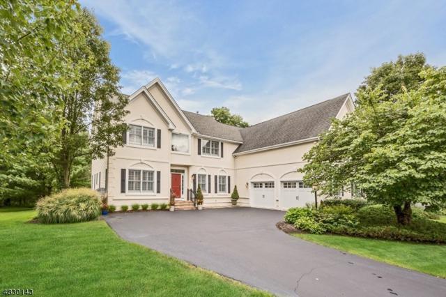 12 Coldstream Ct, Montgomery Twp., NJ 08558 (MLS #3498658) :: The Dekanski Home Selling Team