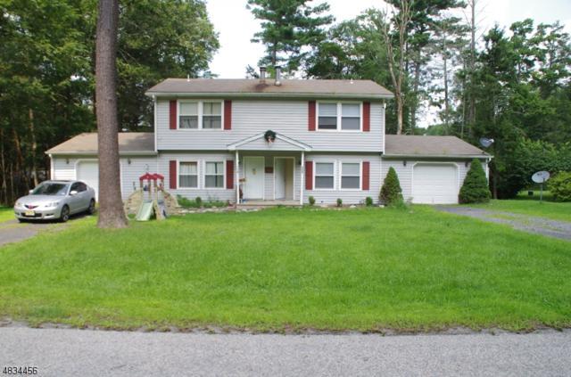 266 Old Chimney Ridge Rd, Montague Twp., NJ 07827 (MLS #3498703) :: The Sue Adler Team