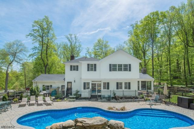 3 Briarcliff Ter, Kinnelon Boro, NJ 07405 (MLS #3498811) :: SR Real Estate Group