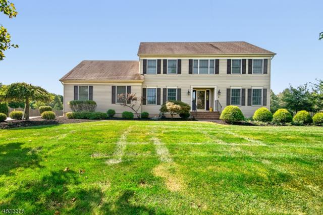 9 Mc Intire Dr, Hillsborough Twp., NJ 08844 (MLS #3498841) :: SR Real Estate Group