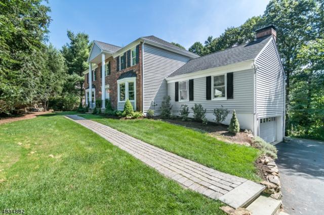 61 Longview Ave, Randolph Twp., NJ 07869 (MLS #3499365) :: William Raveis Baer & McIntosh