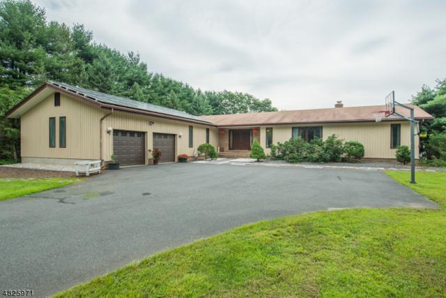453 Rockaway Valley Rd, Boonton Twp., NJ 07005 (MLS #3499780) :: RE/MAX First Choice Realtors