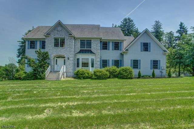 1 Mason Pl, Montville Twp., NJ 07045 (MLS #3499822) :: The Dekanski Home Selling Team