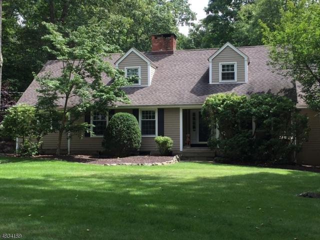 21 Brush Hill Rd, Kinnelon Boro, NJ 07405 (MLS #3500035) :: SR Real Estate Group