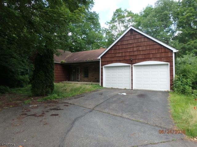 46 Sandpiper Dr, Allamuchy Twp., NJ 07840 (MLS #3500133) :: SR Real Estate Group