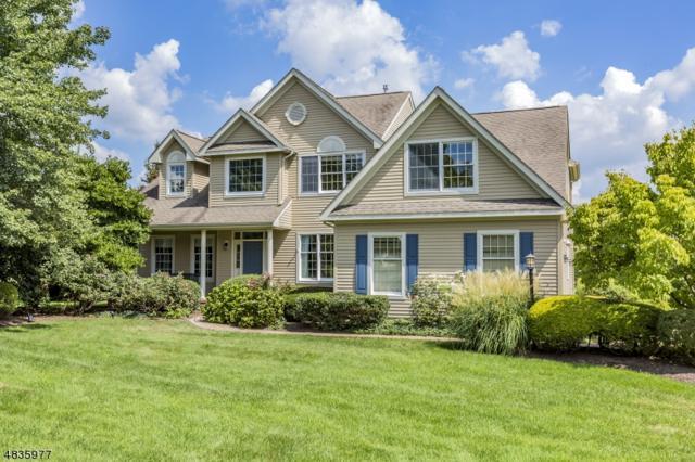 5 Spyglass Rd, Montgomery Twp., NJ 08558 (MLS #3500196) :: The Dekanski Home Selling Team