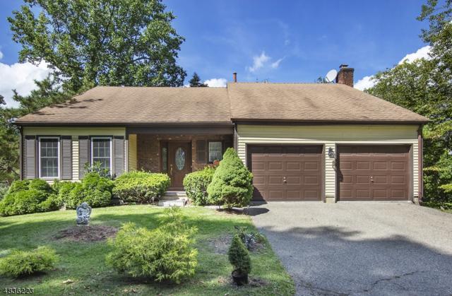 48 Sandpiper Dr, Allamuchy Twp., NJ 07840 (MLS #3500411) :: SR Real Estate Group