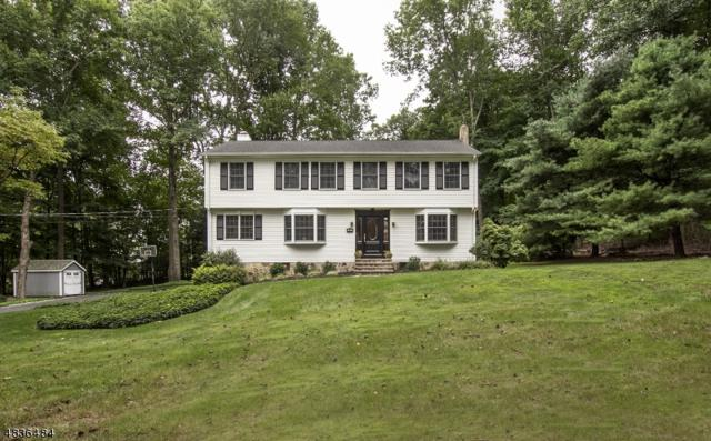 3 Valley View Dr., Chester Twp., NJ 07930 (MLS #3500664) :: William Raveis Baer & McIntosh