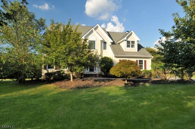 6 Princeville Ct, Montgomery Twp., NJ 08558 (MLS #3500674) :: The Dekanski Home Selling Team