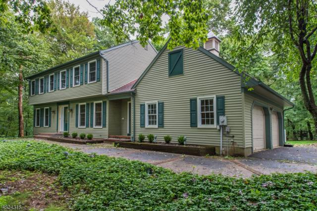 294 Pleasant Grove Rd Fl, Washington Twp., NJ 07853 (MLS #3501545) :: William Raveis Baer & McIntosh