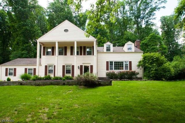 36 Stonehenge Rd, Morris Twp., NJ 07960 (MLS #3501779) :: William Raveis Baer & McIntosh