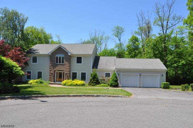 9 Nuthatch Ct, Allamuchy Twp., NJ 07840 (MLS #3502072) :: SR Real Estate Group