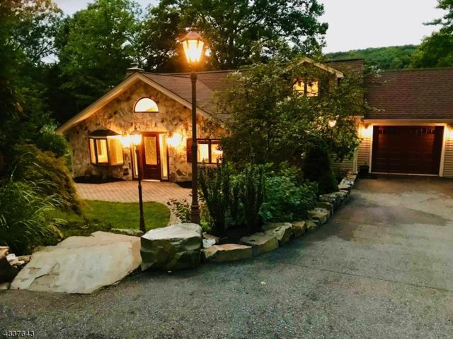 10 Lakeside Trl, Kinnelon Boro, NJ 07405 (MLS #3502092) :: SR Real Estate Group